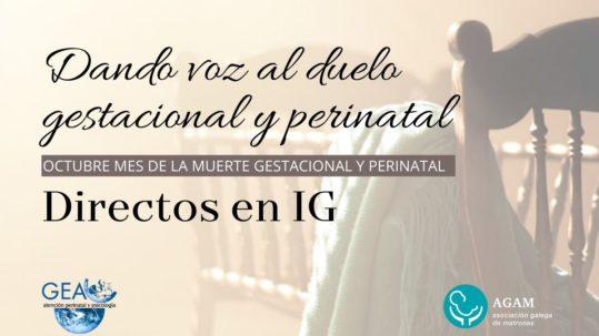 Dando voz al duelo gestacional y perinatal directos de instagram gea psicología AGAM